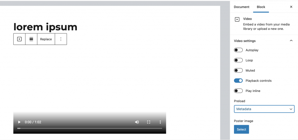 Video block section. Embedded video as well as embed options.